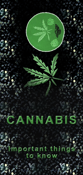 2004 Cannabis important things to know - Leaflet